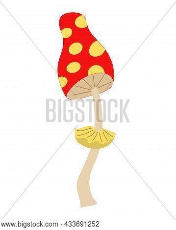Muhamor On An Isolated Background. Hallucinogenic Mushroom Toadstool. Autumn Couple. Inedible Mushro