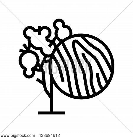 Eucalyptus Wood Line Icon Vector. Eucalyptus Wood Sign. Isolated Contour Symbol Black Illustration