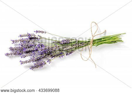 Lavender Bouquet On A White Background, A Bunch Of Lavandula Plants, Aromatic Herb
