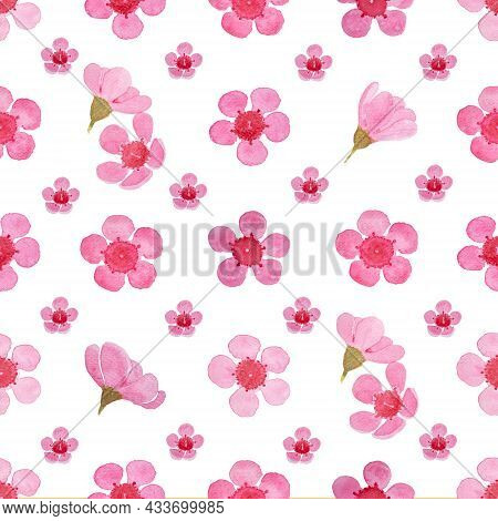 Pink Petals Of Wax Flower Blossom Seamless Pattern Illustration, Watercolor Flora Painting On White