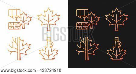 Maple Leaf Significance Gradient Icons Set For Dark And Light Mode. National Emblem Of Canada. Thin