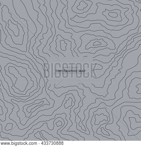 Topographic Map Abstract Background. Outline Cartography Landscape. Topographic Relief Map On Grey B