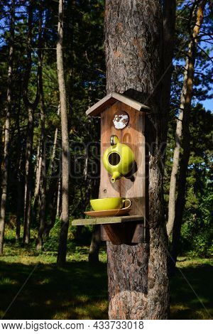A Bird Feeder In The Form Of A Teapot And A Cup .the Feeder Is Installed On A Tree In The Park. Wild