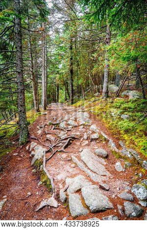 Hiking trail along the Long Pond in Acadia National Park in Maine
