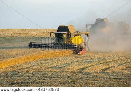 Combine Harvester Harvests Wheat In The Field. Agronomy And Grain Industry