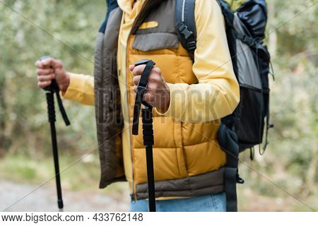 Partial View Of Tourist Wearing Warm Vest And Standing With Trekking Poles Outdoors
