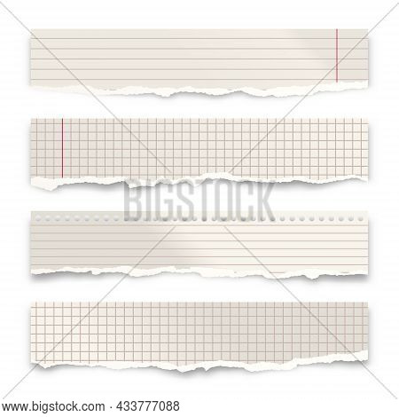 Ripped Paper Strips Isolated On White Background. Realistic Crumpled Paper Scraps With Torn Edges. L