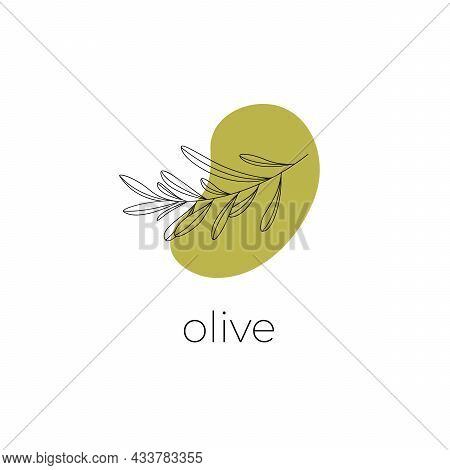 Logo Of Olive Branch . Modern Logo In Line Style On Color Spot. Minimalistic Floral Vector Illustrat