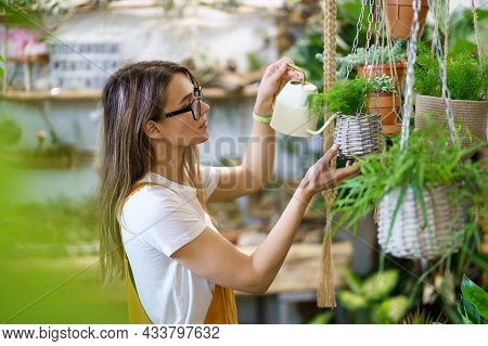 Young Female Gardener Watering Potted Plant Handing. Woman Student Or Professional Florist Taking Ca