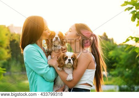 Closeup Portrait Breeders And Dogs. Puppies Cavalier King Charles Spaniel Poses Walk With Owners At