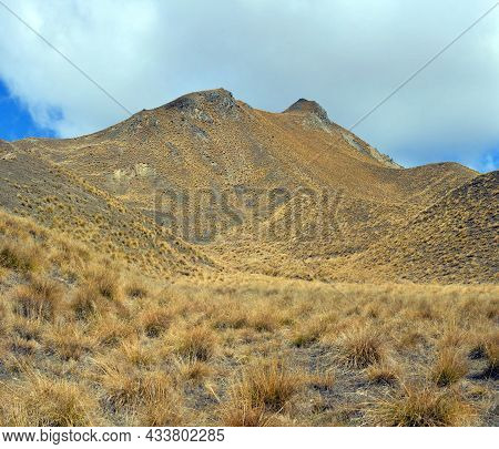 Lindis Pass Tussock And Native Grass Detail, Central Otago, New Zealand