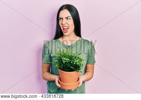 Beautiful woman with blue eyes holding green plant pot angry and mad screaming frustrated and furious, shouting with anger. rage and aggressive concept.