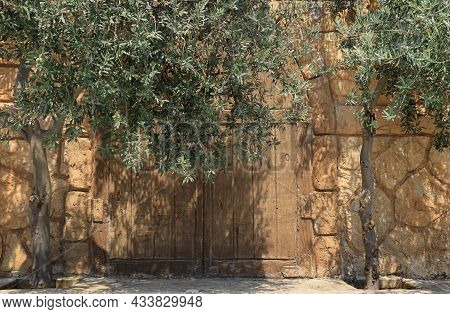 A Rustic Village Doorway In Lebanon Surrounded By Olive Trees.