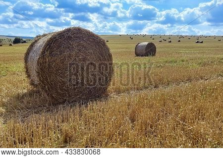 Agriculture Field With Sky. Rural Nature In The Farm Land. Straw On The Meadow. Wheat Yellow Golden