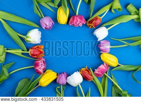 Round Frame Of Tulips With Place For Text. Mix Of Spring Tulips Flowers. Blue Background With Flower