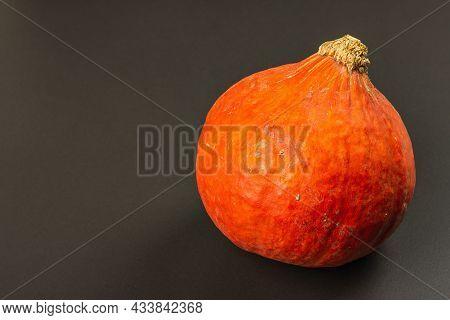 Hokkaido Pumpkin On Black Stone Background