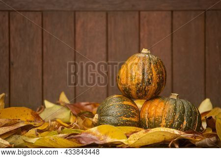 Pumpkins On Rustic Wooden Background, Aautumn, Thanksgiving, Halloween Or Harvest Concept.