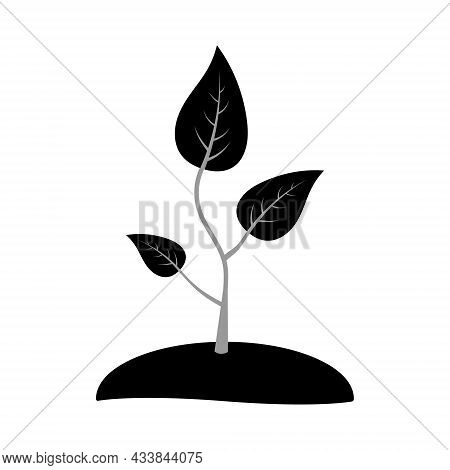 Icon Seedlings Sprout Of A Young Plant For Agriculture