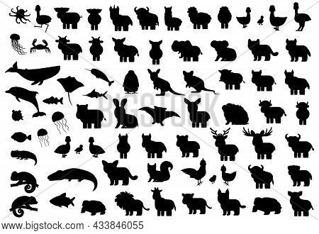 Animals Silhouette Big Set. Vector Elephant Bat Monkey Lion Tiger Giraffe Hippo Rhinoceros Bear Whal