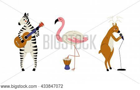 Funny Zebra And Flamingo Character Playing Drum And Guitar Performing Concert Vector Set