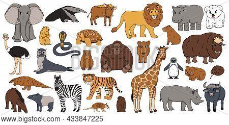 Cute Vector Isolated Animals Big Set. Elephant, Orangutan, Monkey, Lion, Tiger, Giraffe, Hippo, Rhin