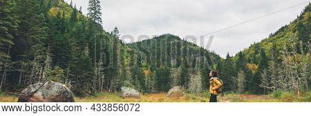 Canada nature hiker walking in forest in fall landscape. Woman traveler looking up hiking in woods panoramic banner.