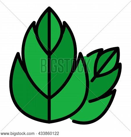 Two Three Segmented Leaves Icon. Outline Two Three Segmented Leaves Vector Icon Color Flat Isolated