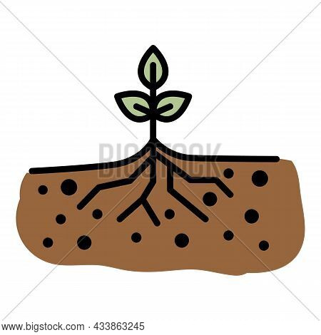 Young Sprout With Root Icon. Outline Young Sprout With Root Vector Icon Color Flat Isolated