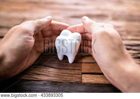 Dental Tooth Insurance And Replace Enamel Service