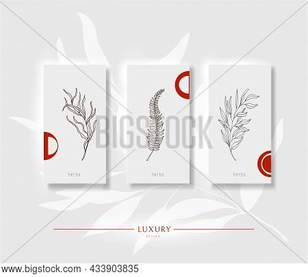 Floral Minimal Background. Light With Red Design Template For Flyers, Brochures, Greeting Cards, Inv