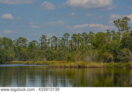 The Blackwater River At Russell Harber Landing In Milton, Santa Rosa County, Florida