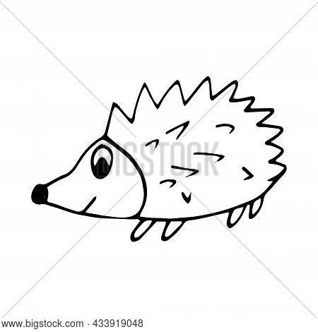 Hedgehog Hand Drawn Doodle. Vector, Scandinavian, Nordic, Minimalism, Monochrome. Animal Cute Baby P
