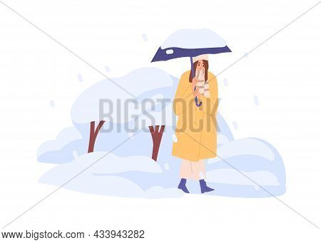 Person Walking Under Umbrella In Snowfall In Cold Winter Weather. Woman Going In Frost With Snowflak