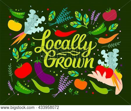 Locally Grown. Vector Illustration, Locavore Food. Organic Vegetables, Lettering With Calligraphy. T