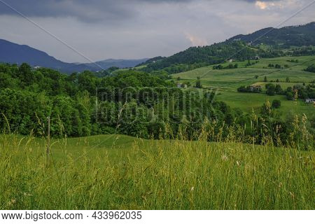 Landscape With Grass And Mountains. Wild Plants Across Mountains, Rural View, Dramatic Sky. Rural Ba