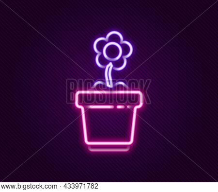 Glowing Neon Line Flower In Pot Icon Isolated On Black Background. Plant Growing In A Pot. Potted Pl