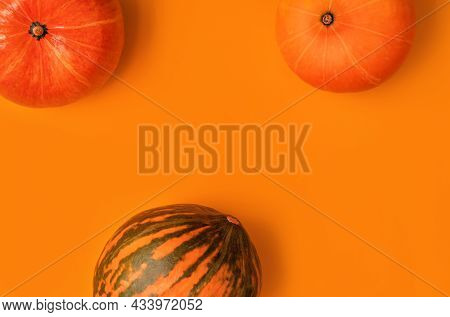 Vintage Design For Any Purposes Orange And Green Pumpkins On Orange Background. Fall Background. Min
