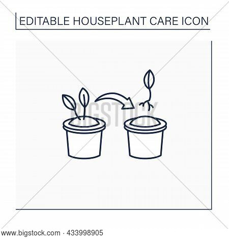 Propagate Line Icon. Spread Houseplant. Bulb Share To Other Pot. Home Gardening. Houseplant Care Con