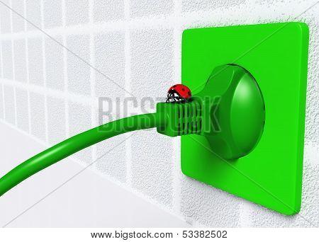 Ladybug On Ecological Plug