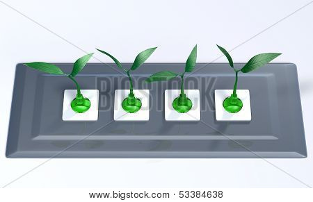 Small Plants Plugged In A Support Panel