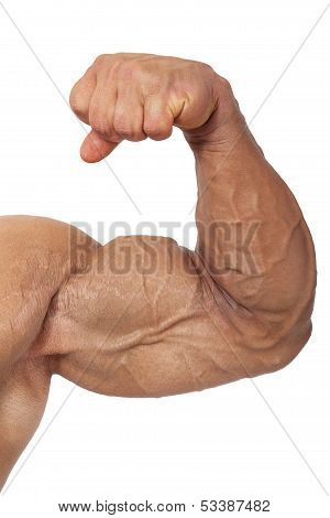 Extreme Bodybuilding.