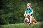 Boy riding a toy rocking horse in a field with trees in background poster