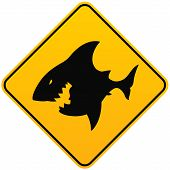 Vector illustration of Shark sighting sign isolated poster