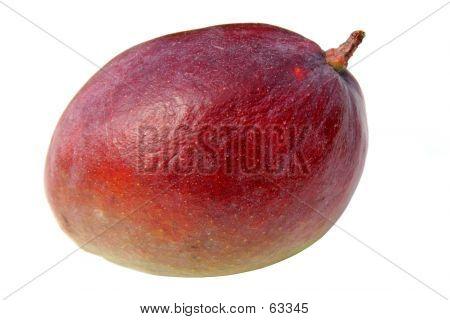 Exotic Mango