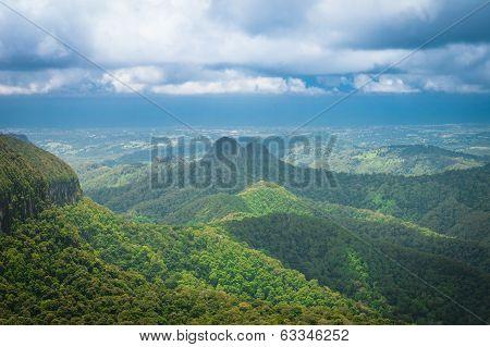 Subtropical rainforest and mountains in Springbrook national park, Queensland, Australia