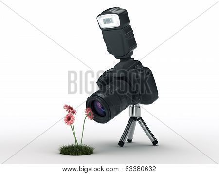photo camera and flowers
