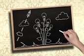 Composite image of hand drawing light bulb plant with chalk on chalkboard with wooden frame poster
