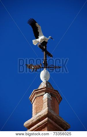Stork taking flight.