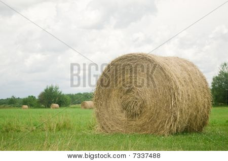 Minnesota Hay Bale