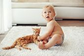 Toddler playing with red cat on a white carpet at home poster